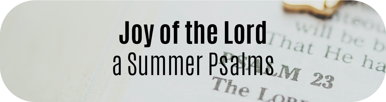 Joy of the Lord Bible Study