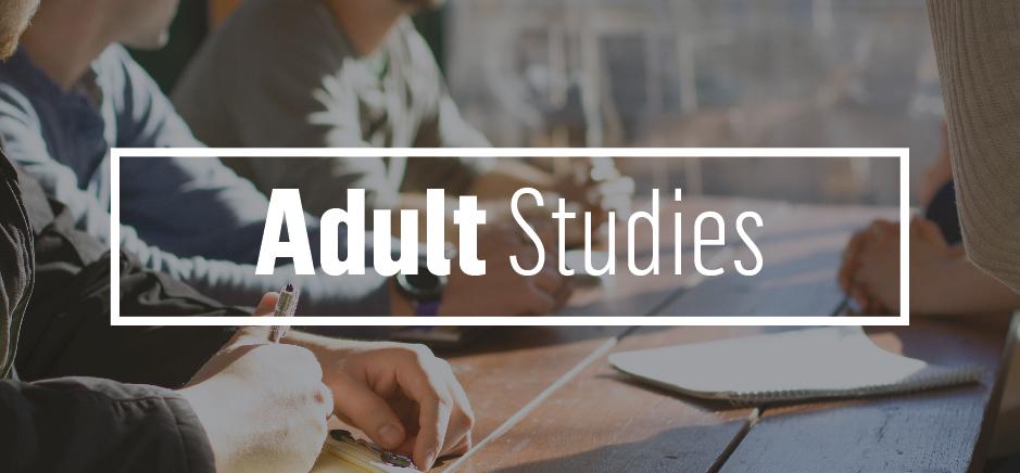 540x209 Adult studies