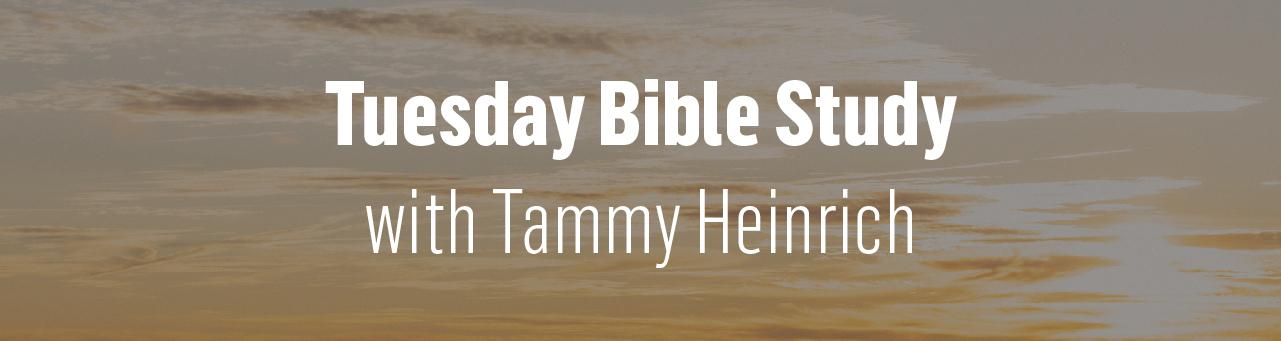 1280x340 tuesday bible study skinny